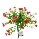 Куст с красными цветочками