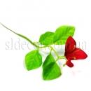 Небольшая веточка с красным цветком