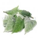 Листья подсолнуха