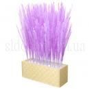 Травка декоративная в ящике