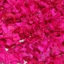 Сухоцвет ярко-розовый