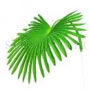 Лист веерной пальмы