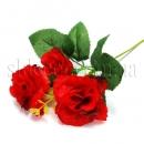 Ветка роз