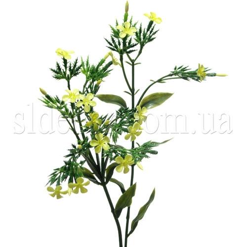 Мелкоцвет желтый
