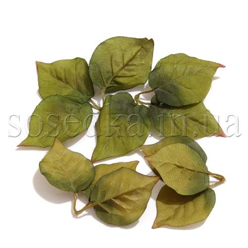 Набор листьев