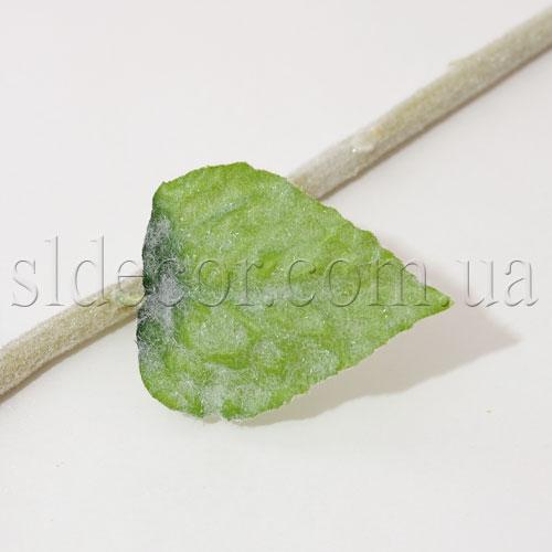 Ствол и листья подсолнуха