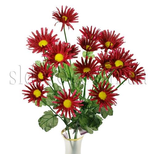 Ветка бордовой хризантемы