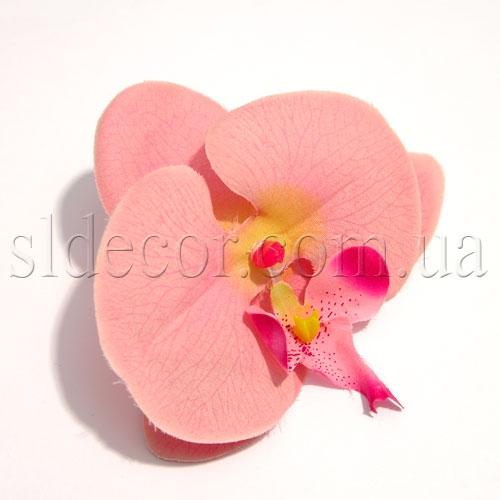 Купить головки орхидей в интернет магазине