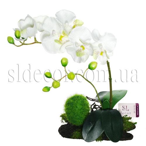 Волховская Бабочка галстуЛистья орхидея иБечевка Игрушка Ткань