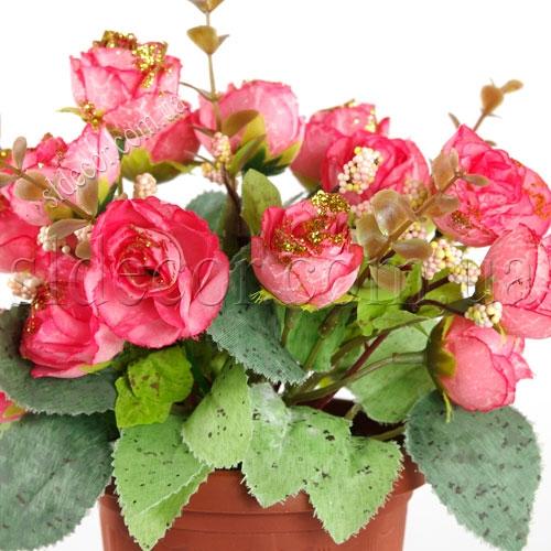 Розовые розочки в пластиковом горшочке