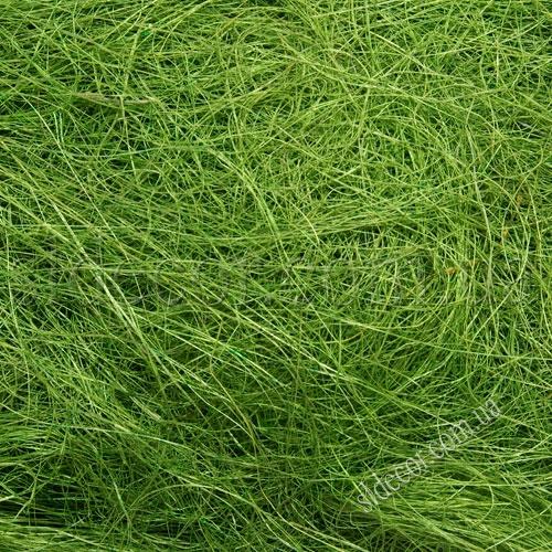 Сизаль ярко-зеленый