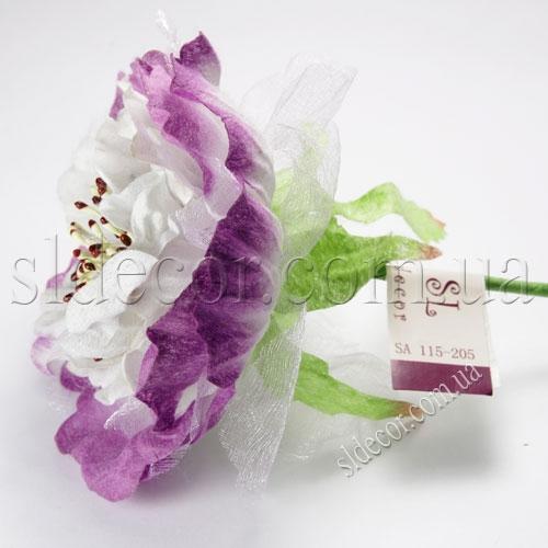 Головки бело-фиолетовых пионов