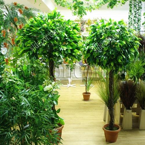 искусственное дерево фикус Фото в интерьере