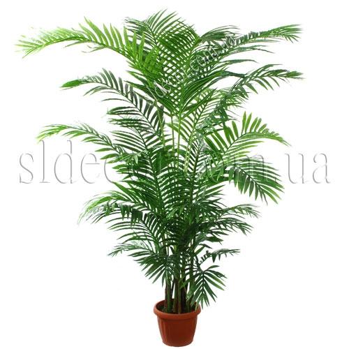 Искусственная пальма Арека