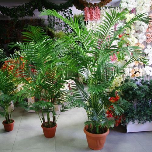 Искусственные пальмы
