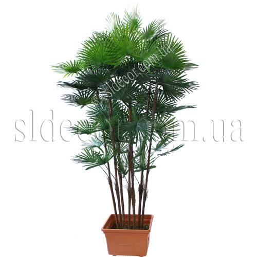 Купить искусственную пальму