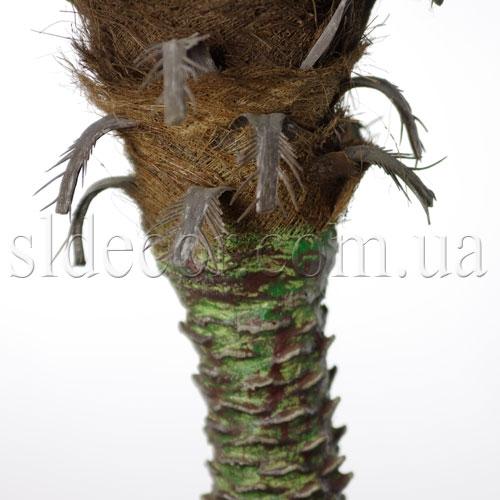 Ствол пальмы с натуральной корой
