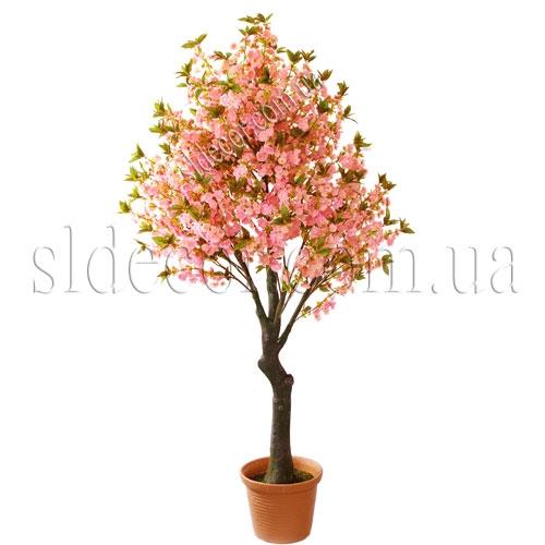 Купить дерево сакуры