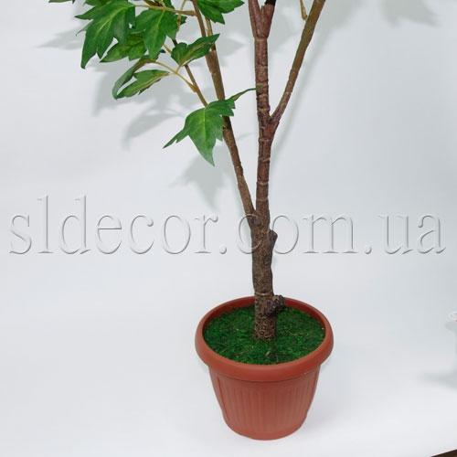Ствол пиона и горшок для растения