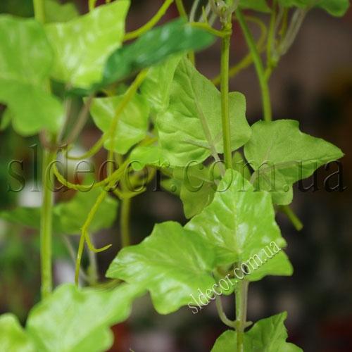 Листья искусственного плюща