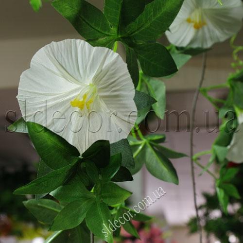 Цветок искусственной ипомеи