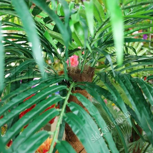 Крепление листьев пальмы к стволу