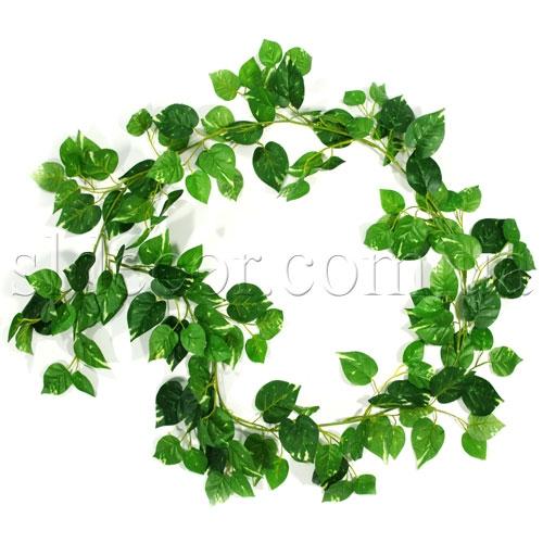 Лиана из зелени