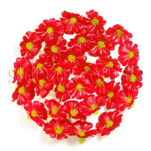 Маленькие головки цветов