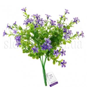 Куст с фиолетовыми цветочками