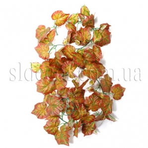 Виноградная лиана