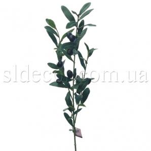 Ветка с оливками