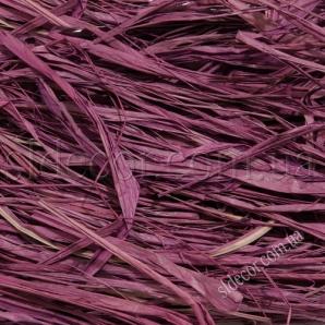 Рафия фиолетовая