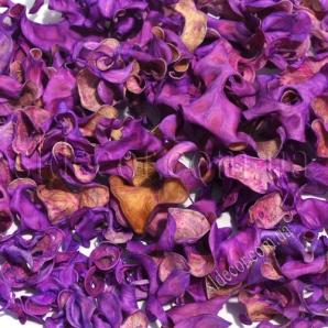 Суховет светло-фиолетовый