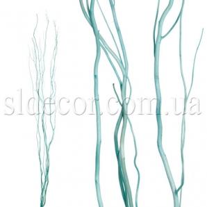 Ветки салекса