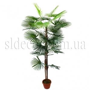 Пальма искусственная красивая