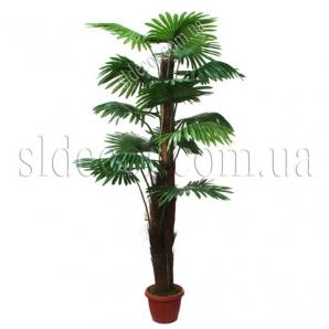 Купить дешево искусственную пальму